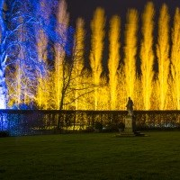 Winter Lights at Anglesey Gardens with dinner