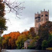 Delectable Durham