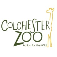 Express Excursion - Colchester Shopper OR Zoo