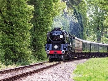 Pashley Manor Tulip Festival & Bluebell Railway