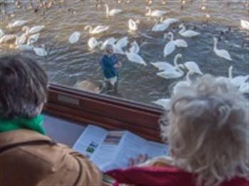 Ely & Welney Swan Feed