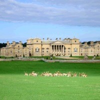 Holkham Hall, Farming Exhibtion & Walled Garden