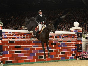 A horse jumping over a brick jump in an arena