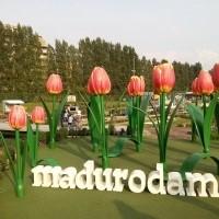 Keukenhof Gardens, Madurodam, & Kaager Lake