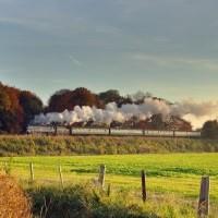 Mid Hants Railway & Monkey World
