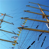 Tall Ships in Sunderland