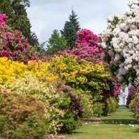 Taverham Garden Centre & Stody Lodge