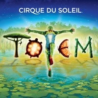 Cirque du Soleil Totem at Royal Albert Hall