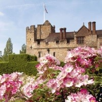 Springtime Flowers at Hever Castle